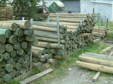 Pine Posts for Sale